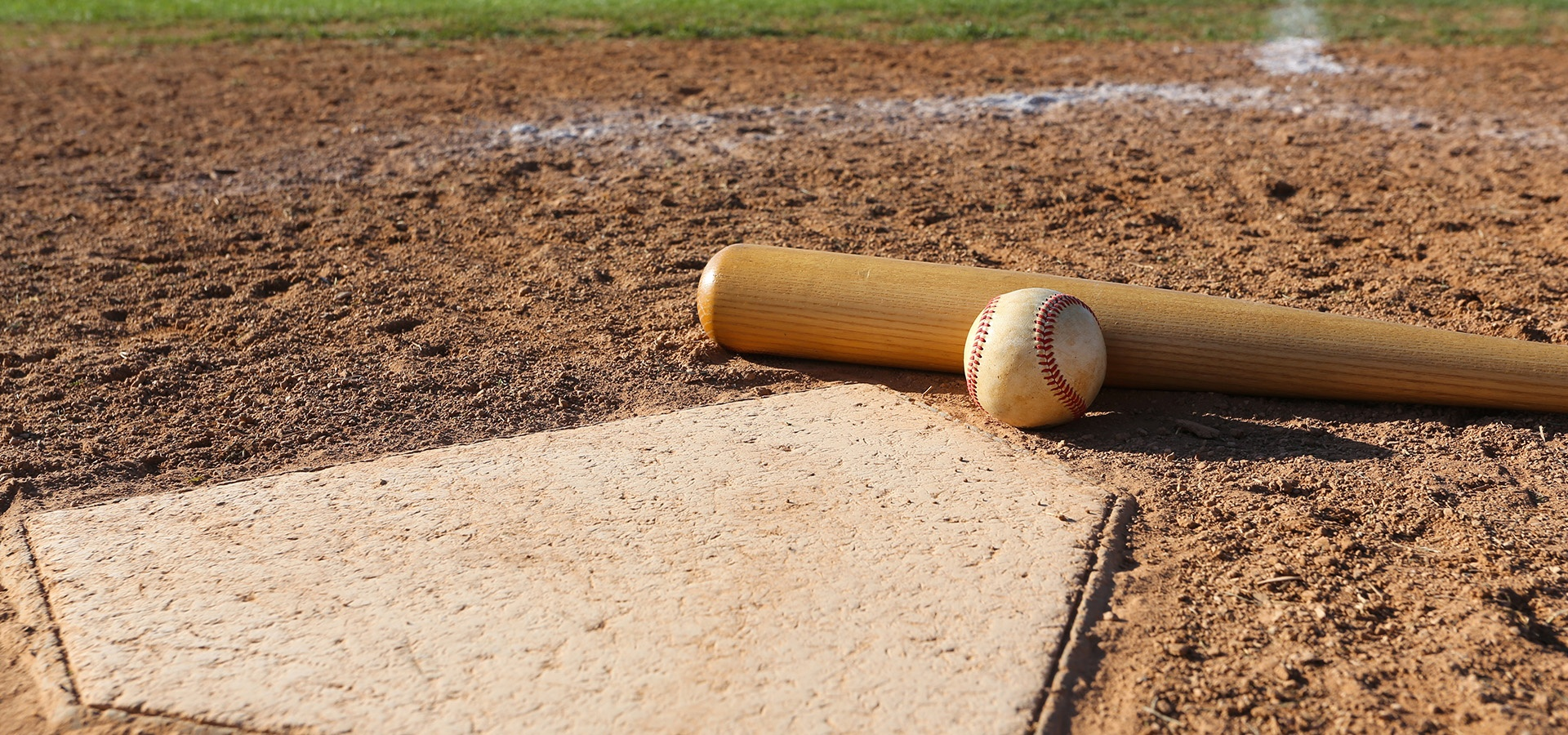 BSP_LP_Bkg_BaseballBINetSuite.jpg