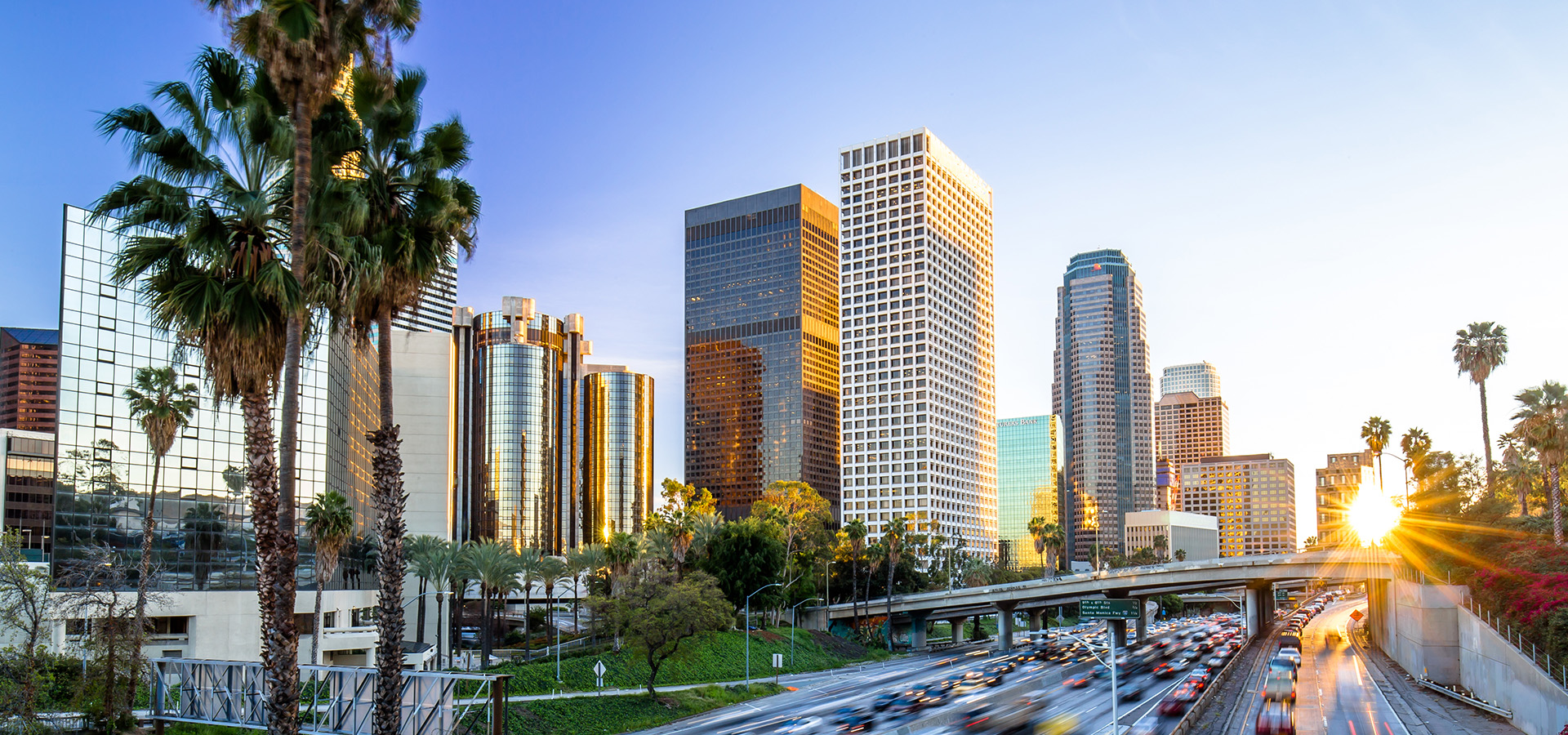 Business Solution Partners - Your Five-Star NetSuite Solution Provider in Los Angeles