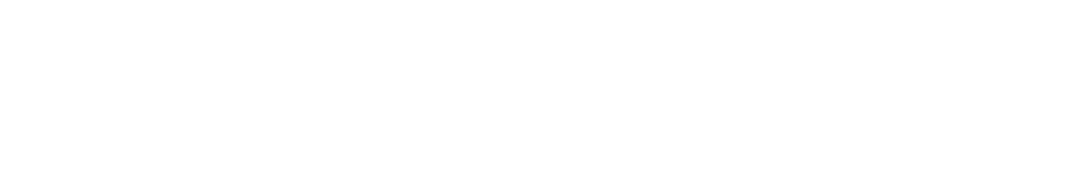 Workday Adaptive Planning Channel Partner logo